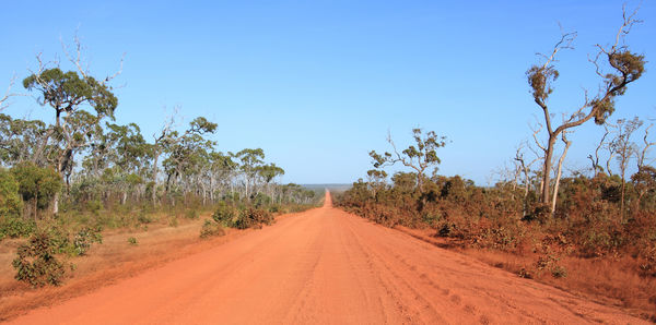 Cape York Road LD